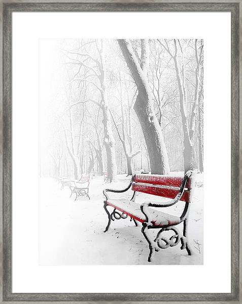 Red Bench In The Snow Framed Print