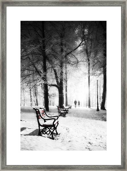 Red Benches In A Park Framed Print
