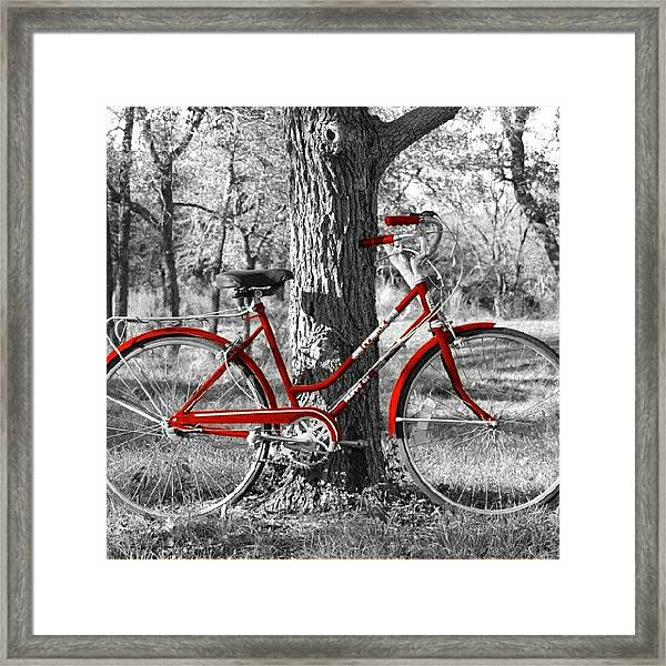 Red Bicycle II Framed Print
