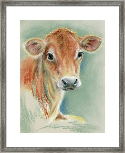Red Calf Portrait Framed Print