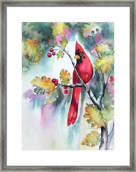 Red Cardinal With Berries Framed Print