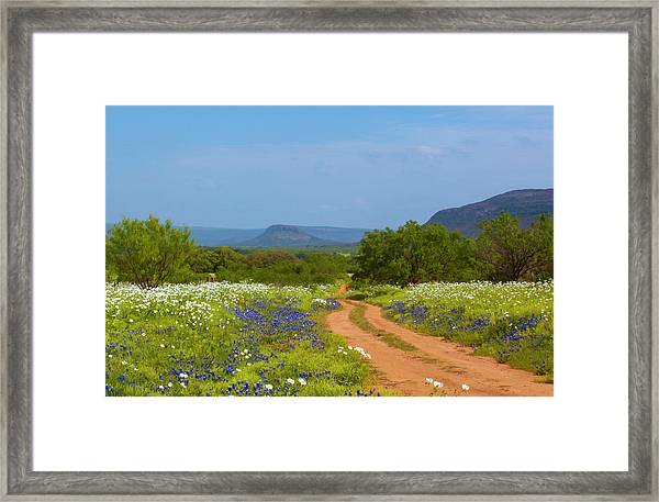 Red Dirt Road With Wild Flowers Framed Print