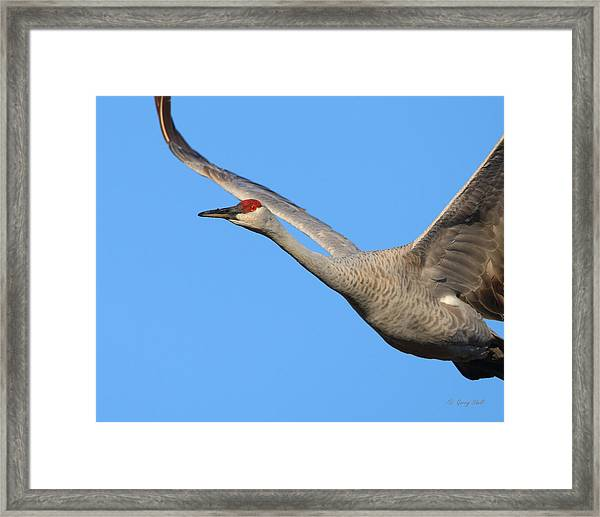 Red Eye Flight Framed Print