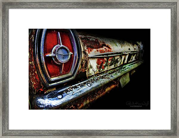 Framed Print featuring the photograph Red Eye'd Wink by Glenda Wright