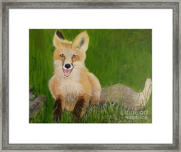 Red Fox 2 Framed Print