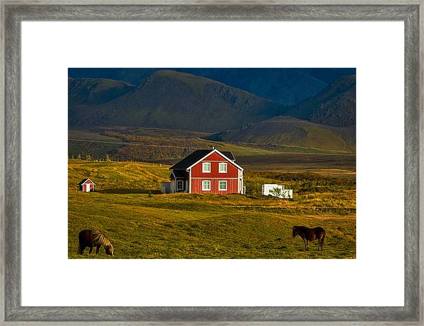 Red House And Horses - Iceland Framed Print