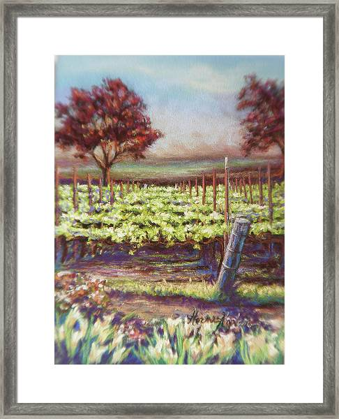 Red Maples And Dafodills Framed Print