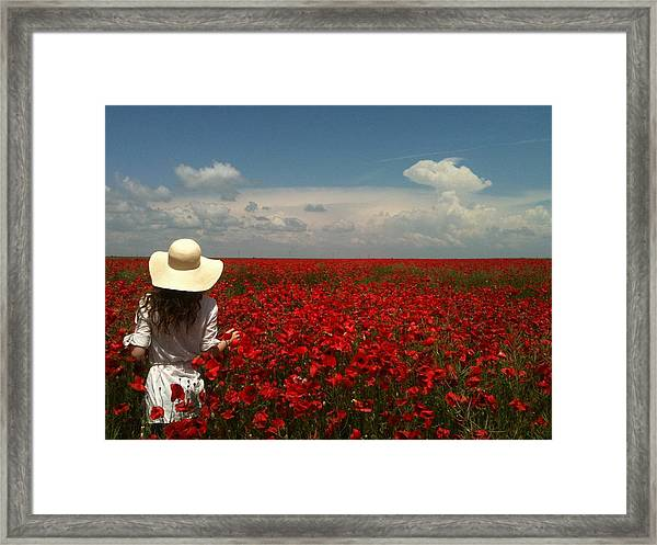 Red Poppies And Lady Framed Print
