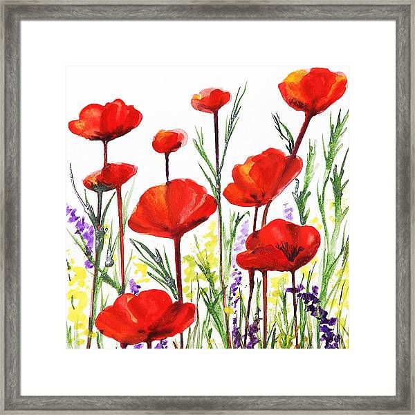 Red Poppies Art By Irina Sztukowski Framed Print