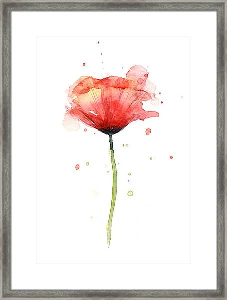 Red Poppy Watercolor Framed Print