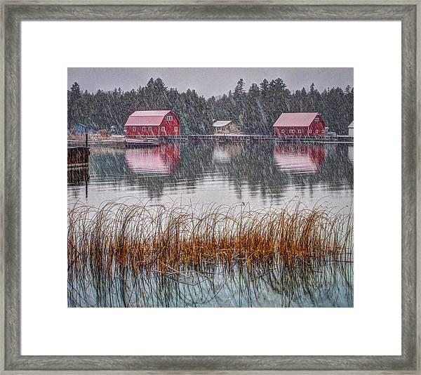 Red Reflection Framed Print
