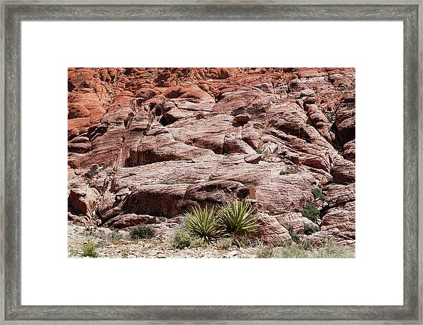 Red Rock Canyon 3 Framed Print