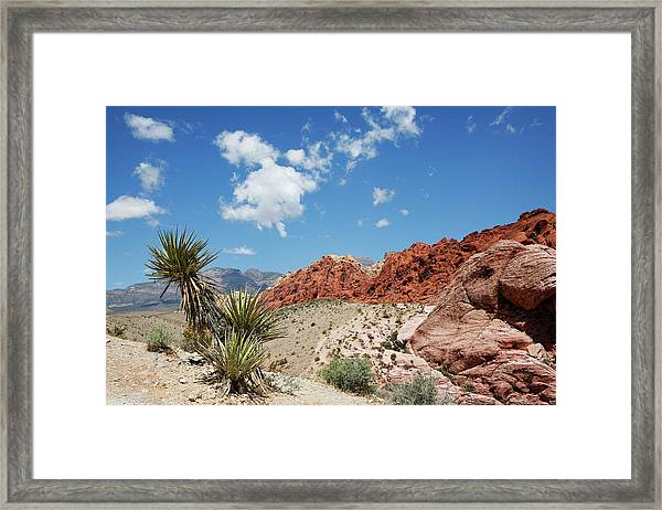 Red Rock Canyon 4 Framed Print