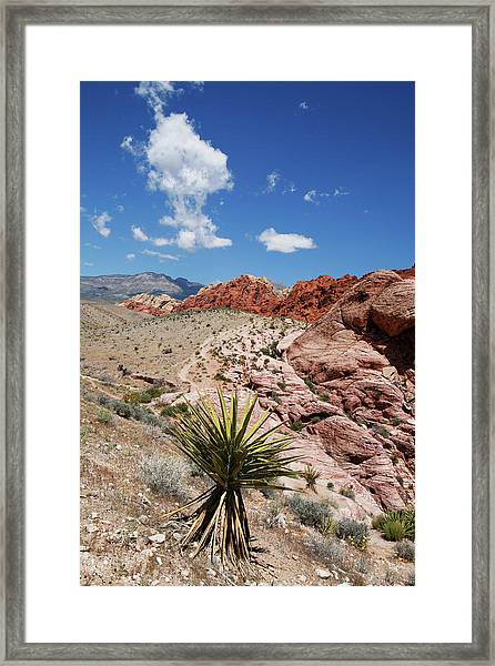 Red Rock Canyon 5 Framed Print