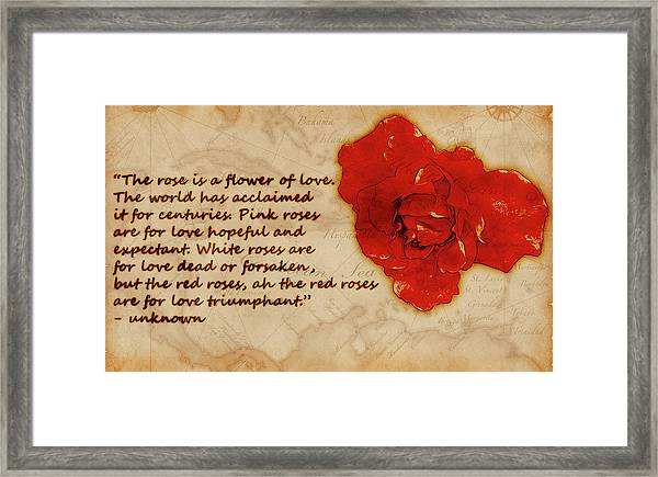 Red Rose Significance Framed Print