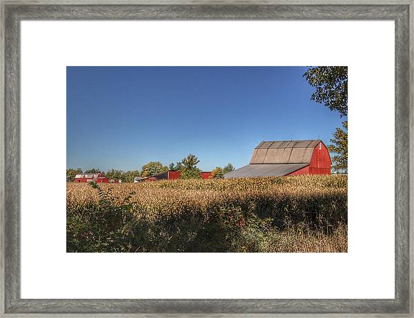 0042 - Red Saltbox Barn Framed Print