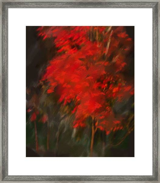 Red Tree Framed Print by Claire Whitehead