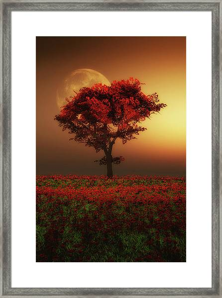 Framed Print featuring the painting Red Tree In The Evening by Jan Keteleer