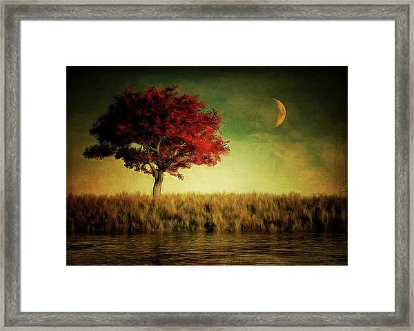 Framed Print featuring the painting Red Tree With Moonrise by Jan Keteleer