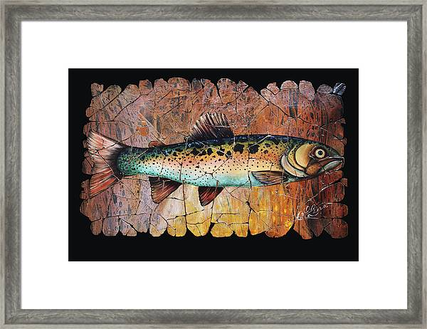 Red Trout Fresco Framed Print