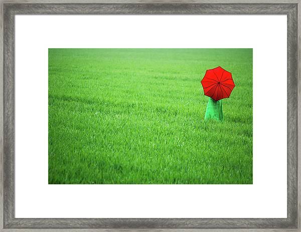 Red Umbrella In Green Field Framed Print