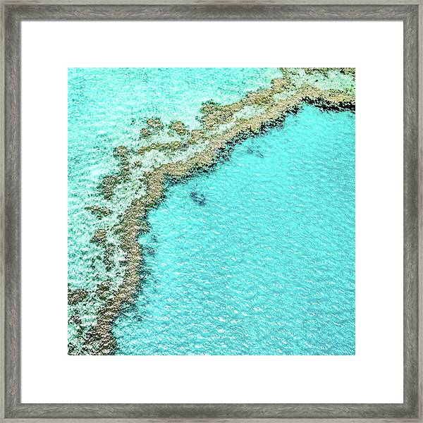 Reef Textures Framed Print