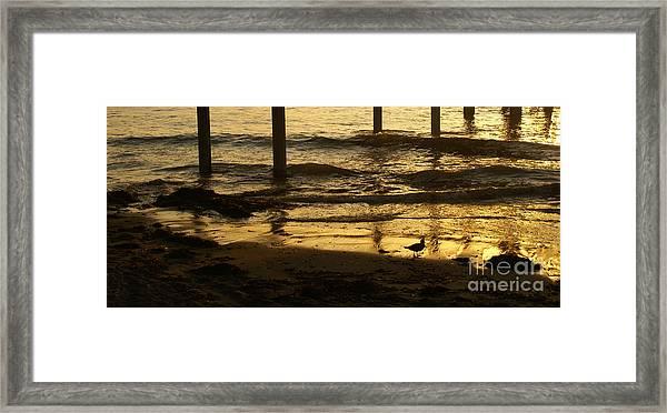 Reflecting Gold Framed Print