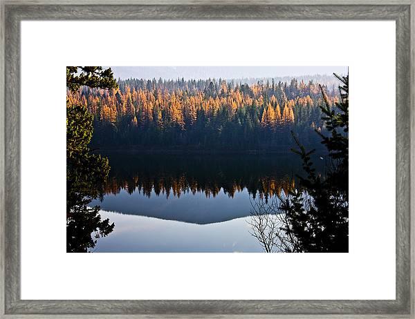 Reflecting On Autumn Framed Print