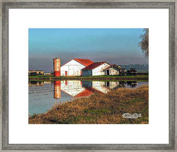 Framed Print featuring the photograph Reflection Barn  by William Havle