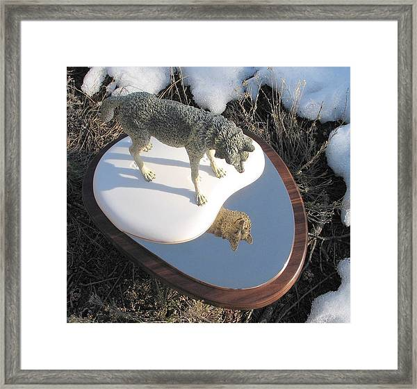 Reflection Framed Print by James Roybal