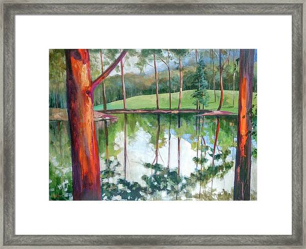 Reflection Pond Framed Print
