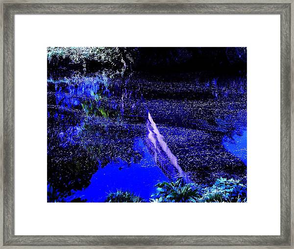 Framed Print featuring the photograph Reflections by HweeYen Ong