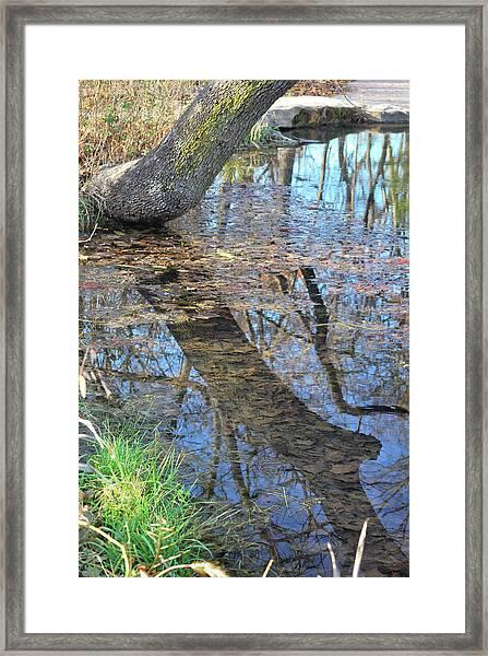 Reflections I Framed Print