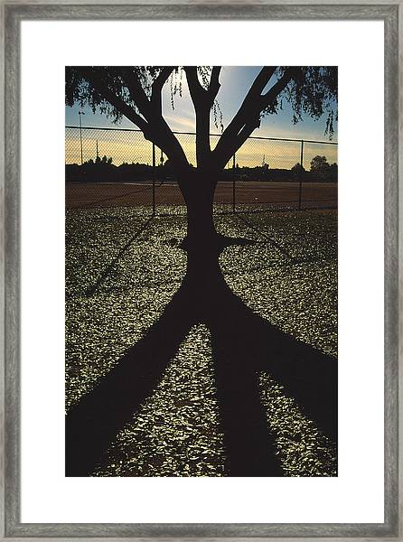 Reflections In A Park Framed Print