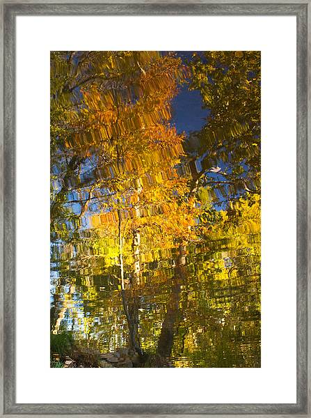 Reflections Of Fall - Grasshopper Point Framed Print