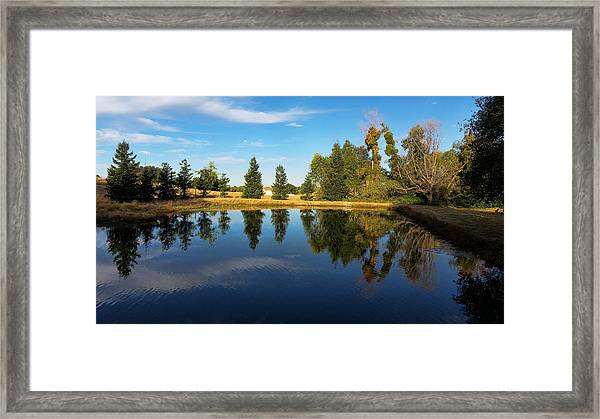 Reflections Of Life Framed Print