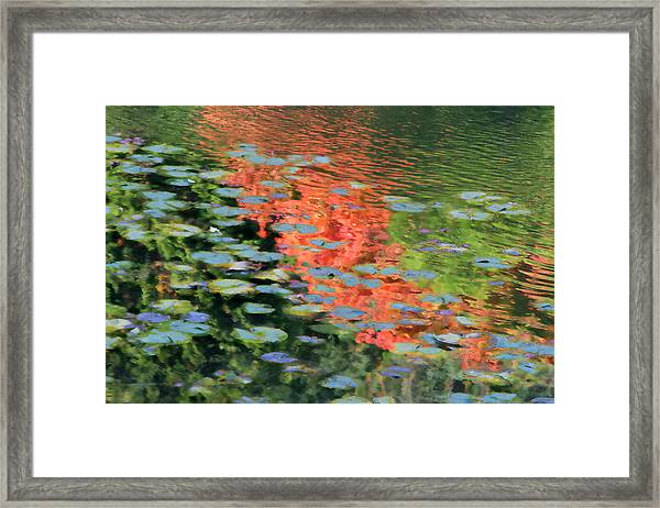 Reflections On A Lily Pond Framed Print