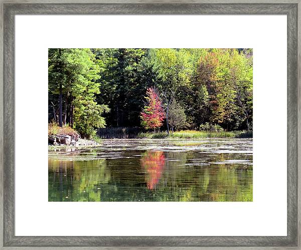 Reflections On The Rift Framed Print