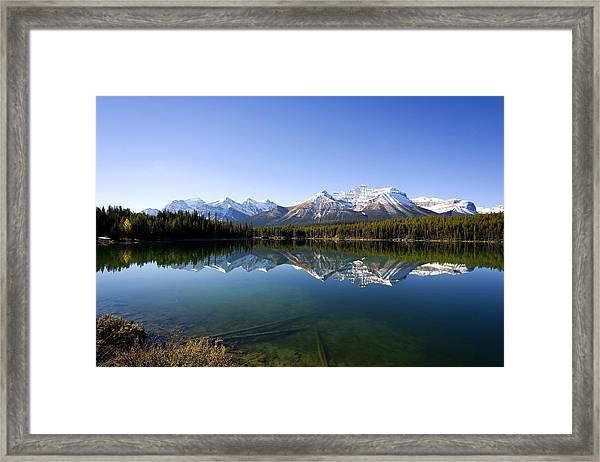 Reflections Framed Print by Richard Steinberger