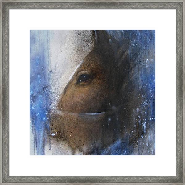 Reflective Horse Framed Print