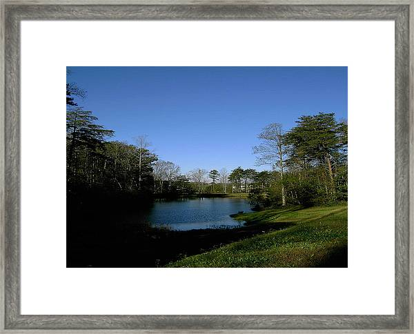 Relaxing By The Pond Framed Print by Patrick Murphy
