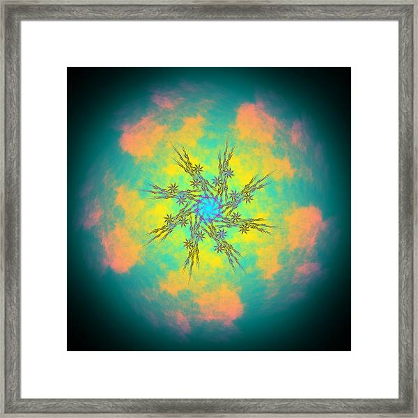 Reluctured Framed Print