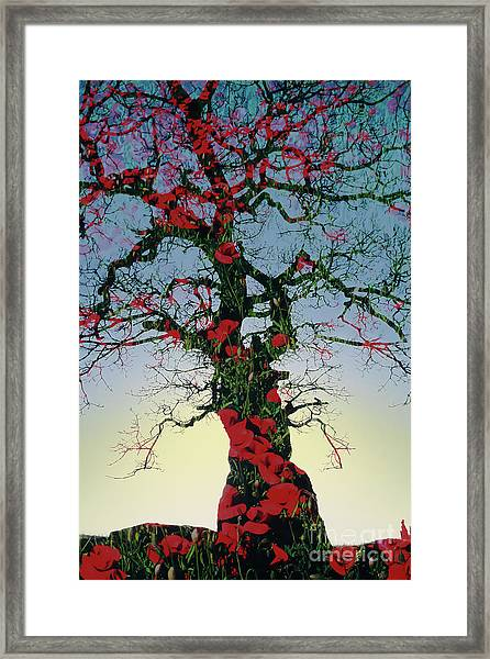 Remembrance Tree Framed Print