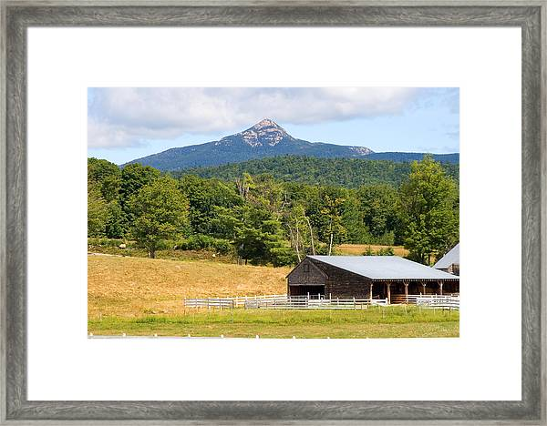 Remick Summer Framed Print