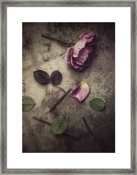 Remnants Framed Print