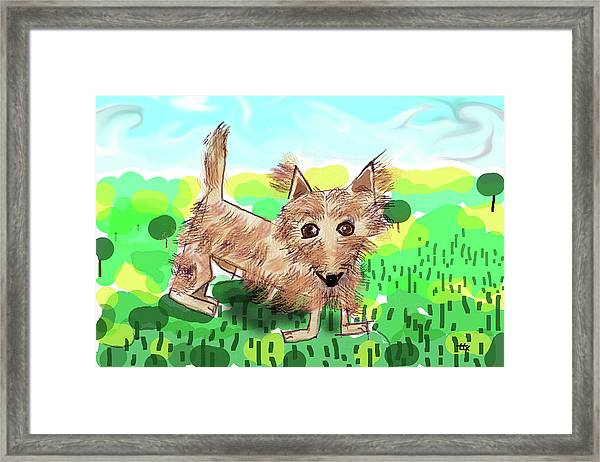 Remy, Laird Of The Cairn Framed Print