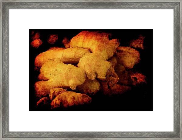 Renaissance Ginger Framed Print