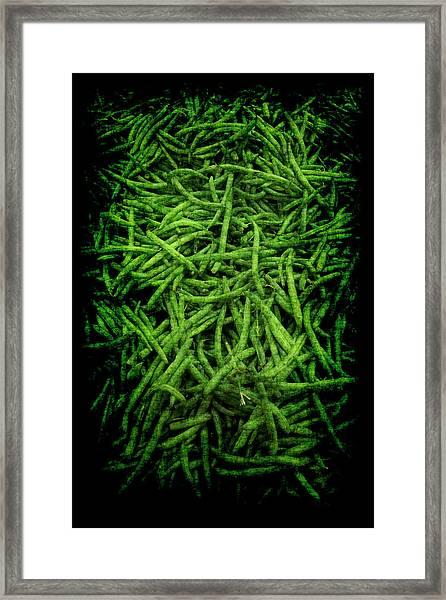 Renaissance Green Beans Framed Print