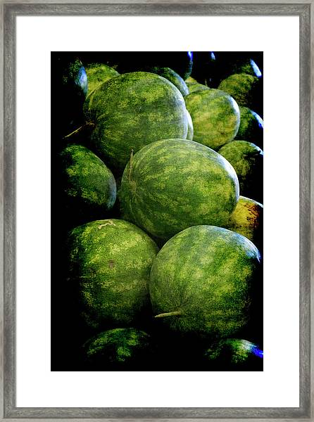 Renaissance Green Watermelon Framed Print