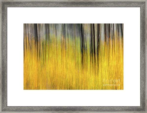 Renewal Abstract Art By Kaylyn Franks Framed Print